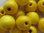 Wooden bead, round, 16x15mm, yellow, 10 pcs